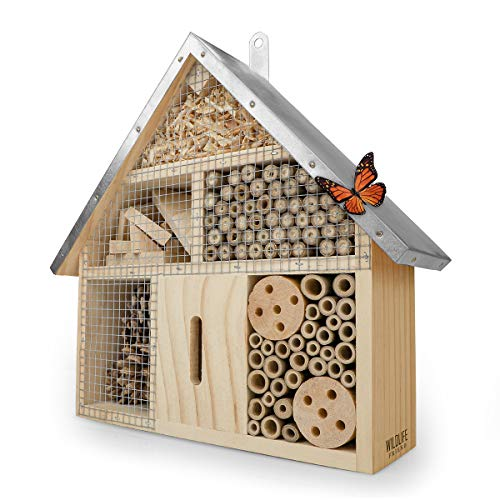 WILDLIFE FRIEND | Insektenhotel mit Metalldach - unbehandelt, Insektenhaus aus Naturholz für...