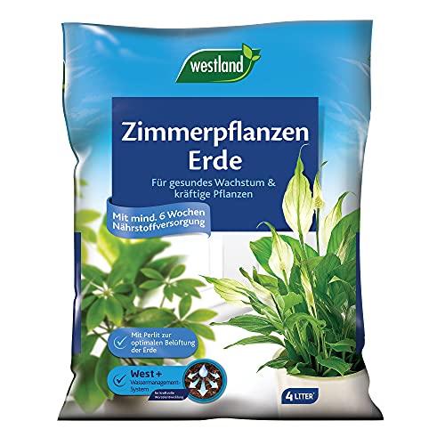 Westland Zimmerpflanzen Erde, 4 l – Erde mit Tongranulat für ein gesundes Wachstum, Blumenerde...