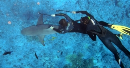 Unterwasserkameras im Test