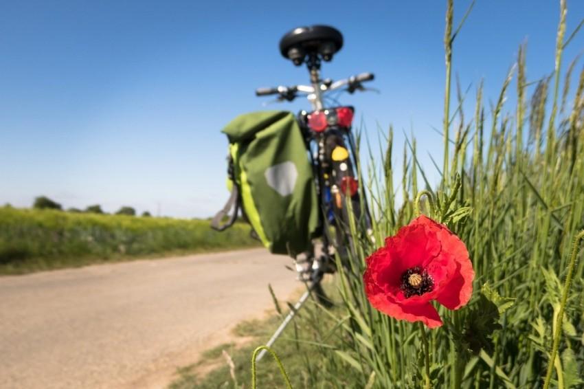 Eine Fahrradtasche kaufen