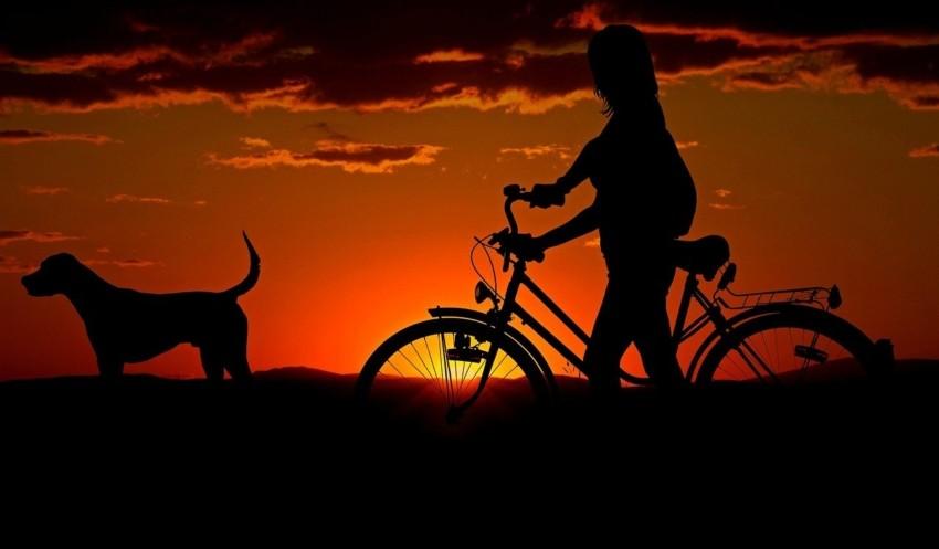 Test einer Fahrradlampe
