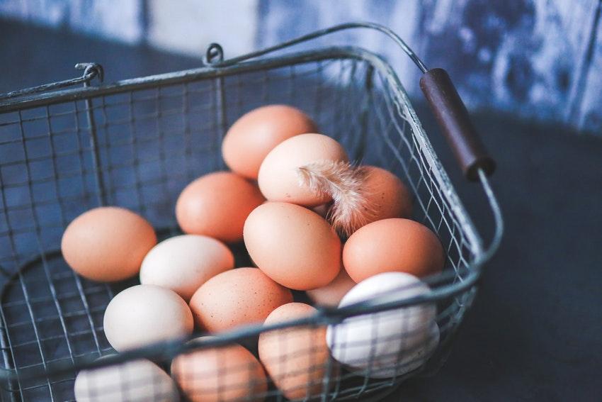 Der Profi Eierschneider im Test