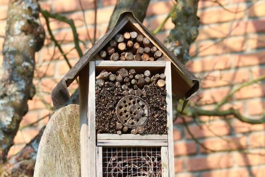 Ein Insektenhotel selber bauen