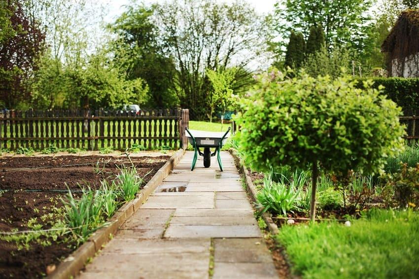 Eine Schubkarre, die in einem Garten steht