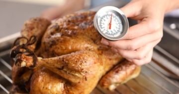 Ein analoges Fleischthermometer